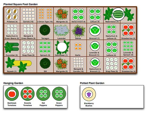 McIntyre Square Foot Garden Plan Gardens Pulling And Example