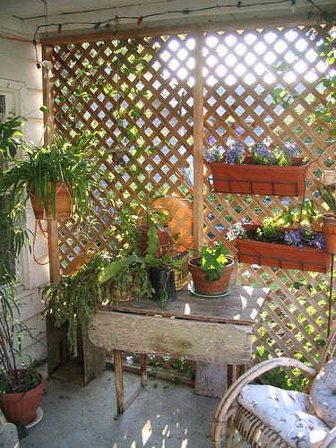 Garden Trellis Used In This Way Gives Some Protection From The