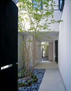 db  bbdc  also best images about sideyards on pinterest studios architecture rh