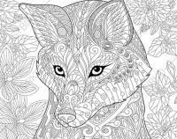 Adult Coloring Pages. Fox. Zentangle Doodle Coloring Book ...