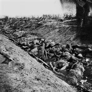 Battle of Antietam Casualties  Civil War  Pinterest
