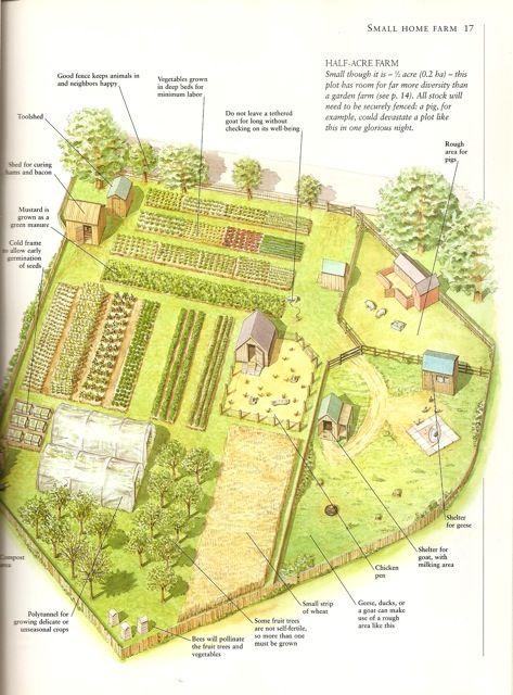 farm layout horse