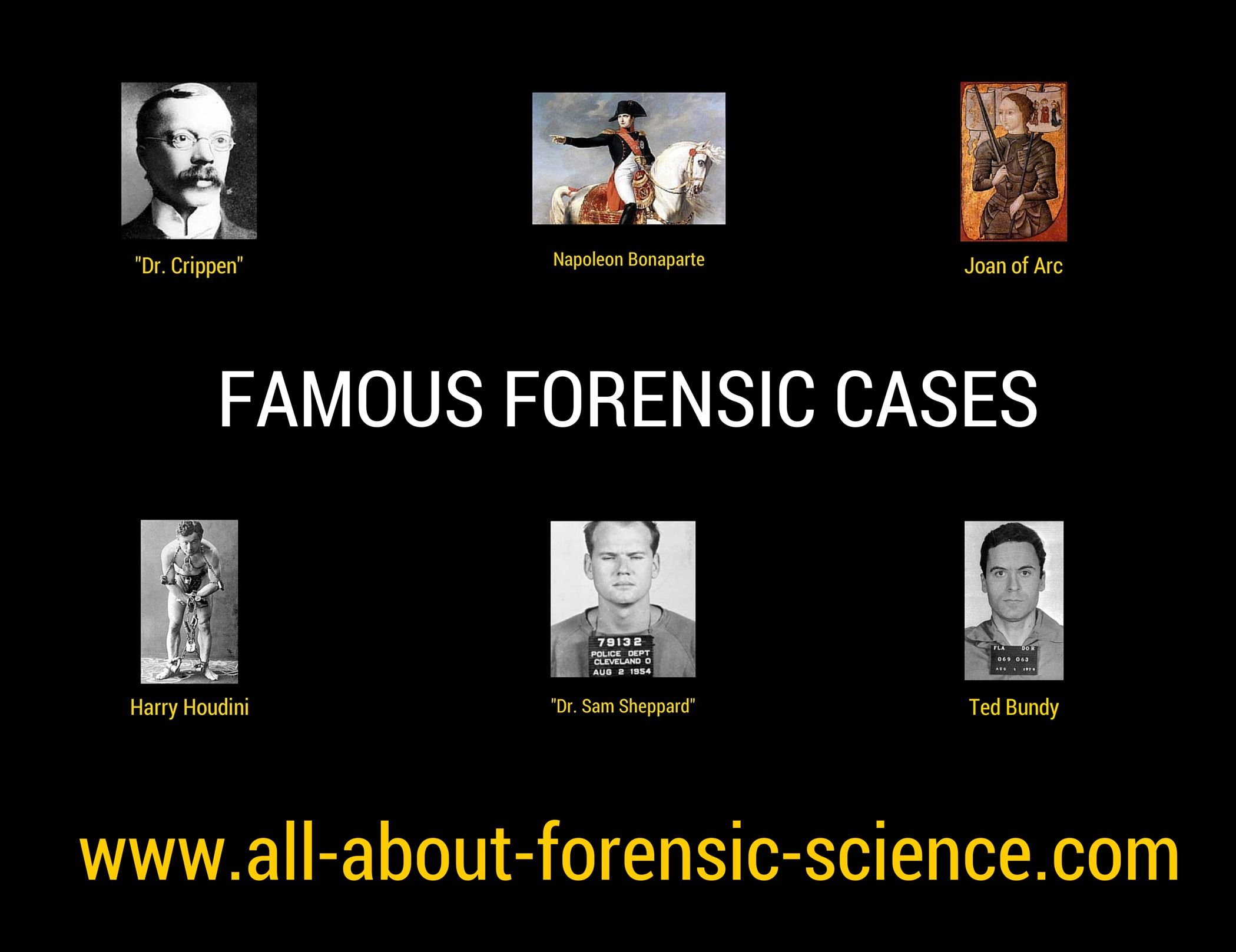 Forensic Scientist School Requirements