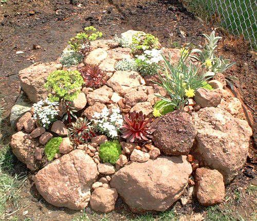 Landscape Color Schemes Trädgårdar Växter Och Stenar