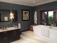 Our new 'blue steel' bathroom walls using Plascon Double ...