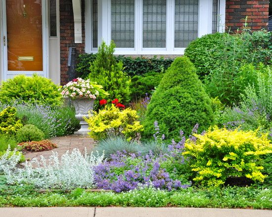 lawnless texas landscaping design