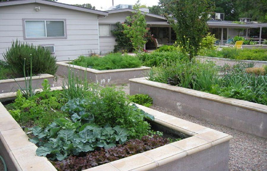 Concrete Raised Garden Beds Ideas Lanewstalk Com The