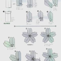 Origami Flower Diagram In English 2004 Ford F150 Headlight Wiring Tutorial Sakura