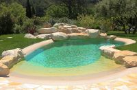 small beach entry pool with rock surrounds is great for a
