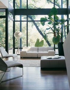 Living room interior design incorporating large indoor plant and crossed steel structural beams to mimic also rh uk pinterest