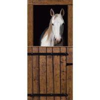 Door+Wall+Murals | Horse Stables Door Mural | Wall Mural ...