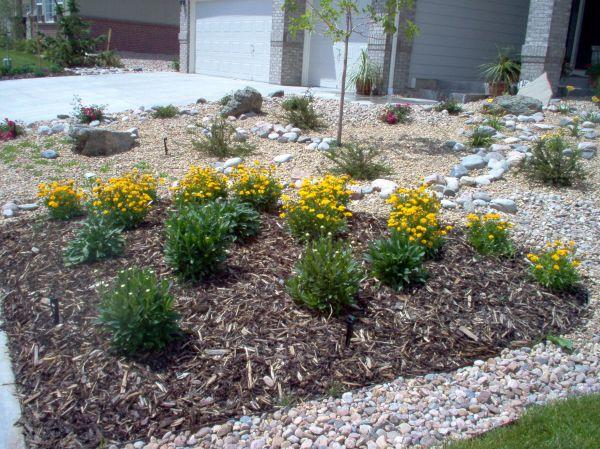 landscaping-ideas-ravishing-xeriscape-ideas-front-lawn-xeriscape-landscaping-plants-arizona