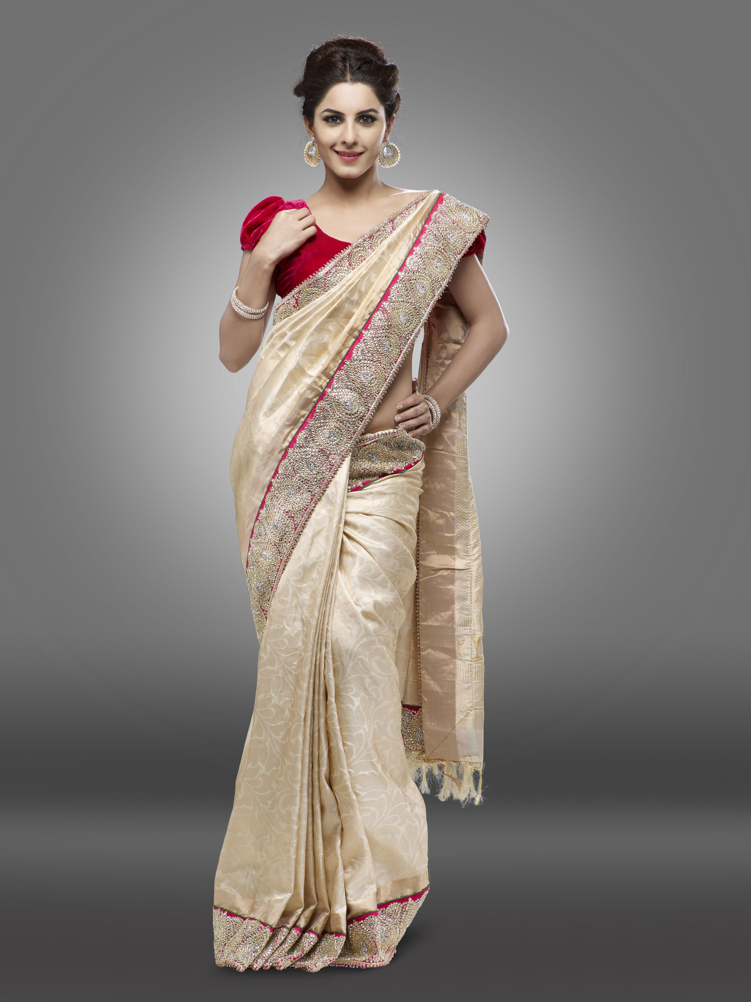 Saree Heavy Butti Red Work Border Bridal