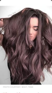Brown amethyst hair color guy tang | [hair] | Pinterest ...