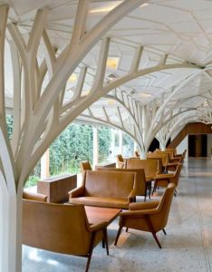 Restaurant and bar design awards winners announcement also  cantina spain by esudio nomada architecture rh pinterest