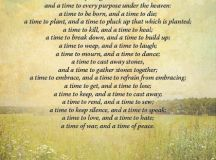 Funeral Reading A time for everything | Funeral Readings ...