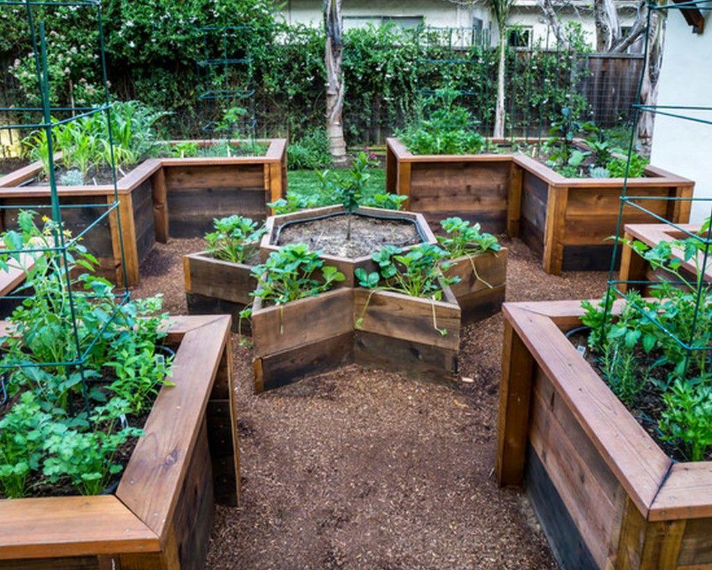 Pinterest Raised Vegetable Garden Ideas