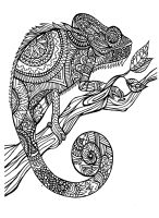 Free coloring page coloring adult cameleon patterns. A ...