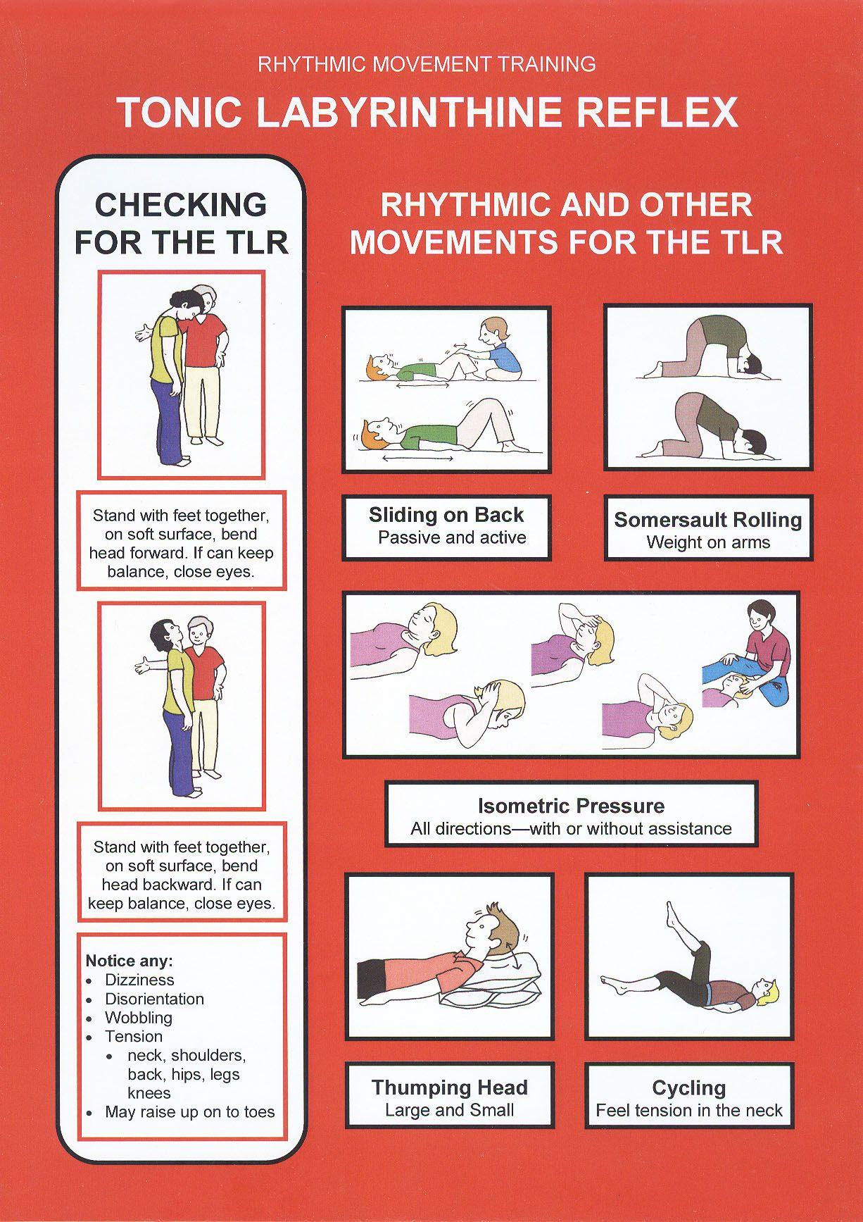 208 Rmt Reflex Integration Chart Set Set Of 12 A4