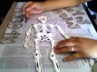 Como Vestir Calavera O Esqueleto De Papel Revolucionario