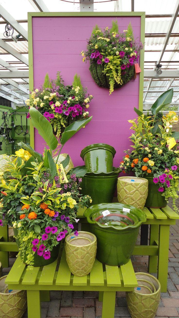 I Want That Large Ruffle Edged Pot! Flower Power Pinterest