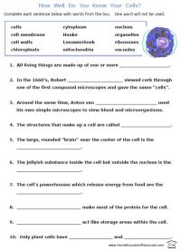 free printable cells worksheets fill in the blanks biology