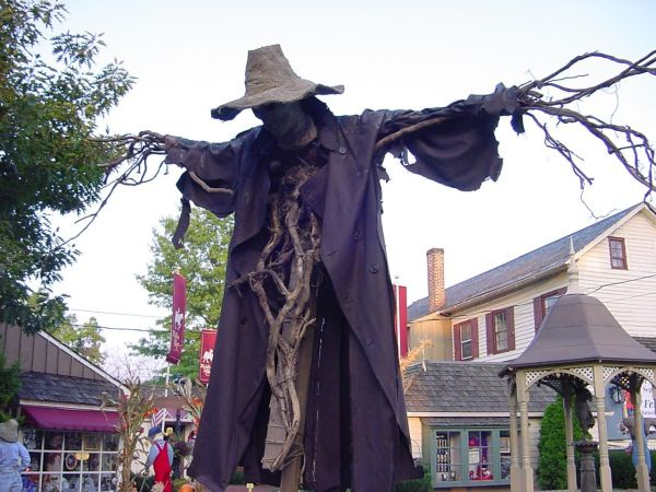 """""""johnny Appleseed"""" Master Scarecrow Maker Pumpkin Rot"""