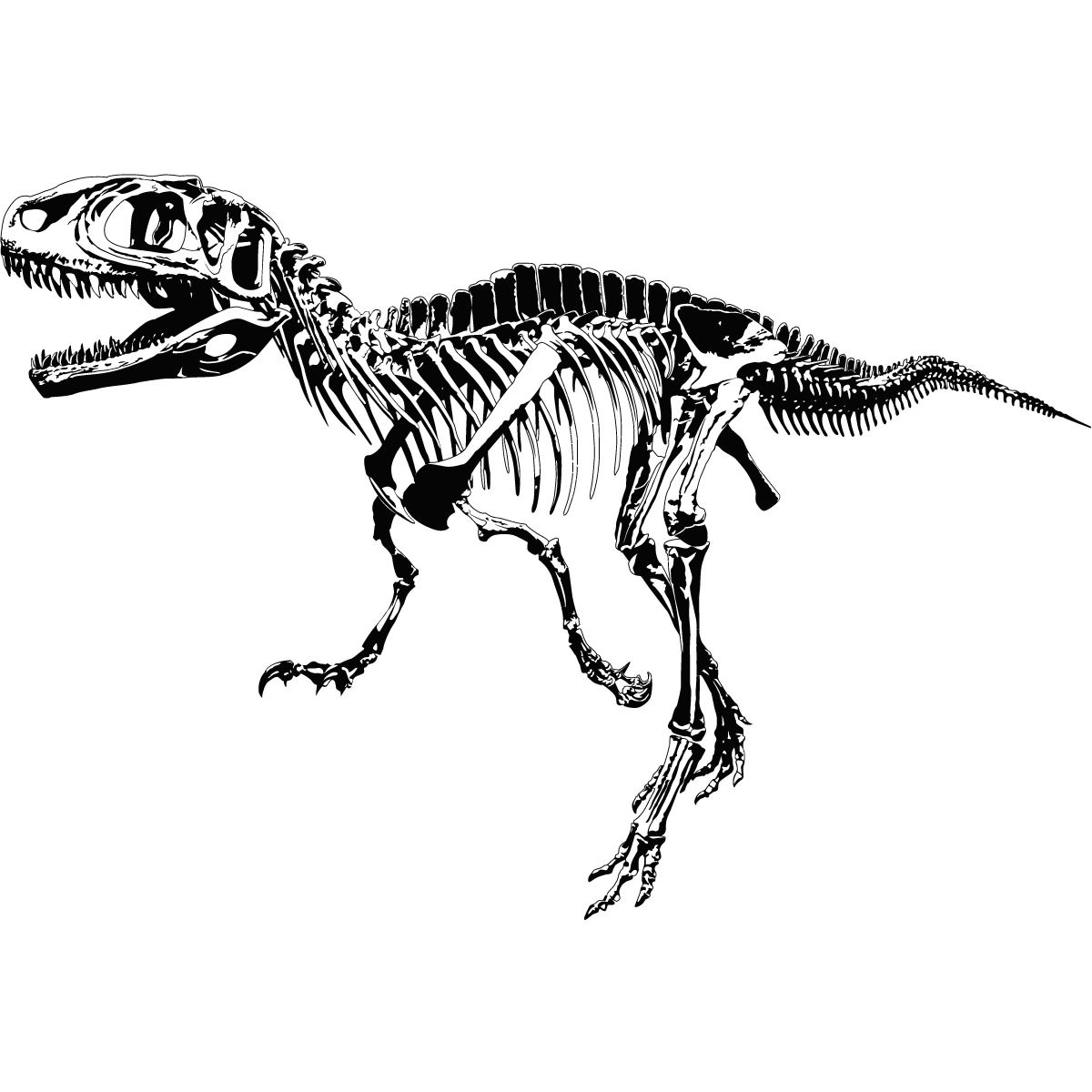 Details About T Rex Skeleton Dinosaurs Wall Art Sticker