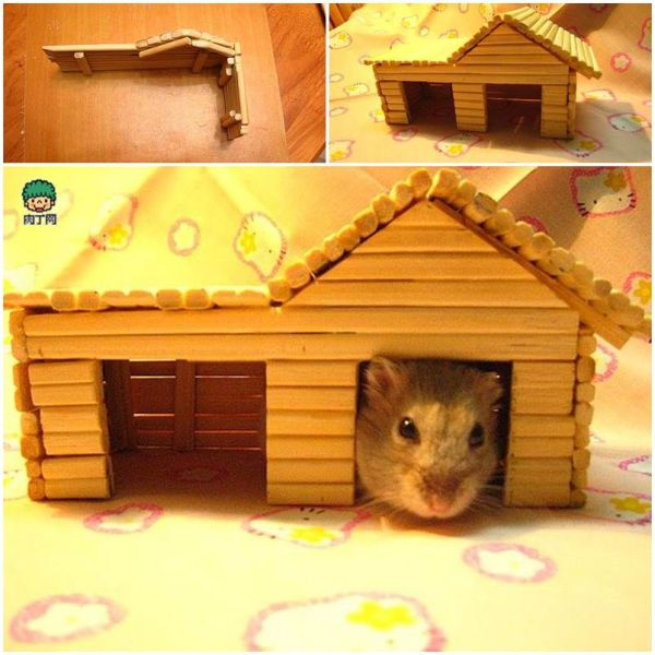 How to DIY Popsicle Stick House Hamster house Hamster
