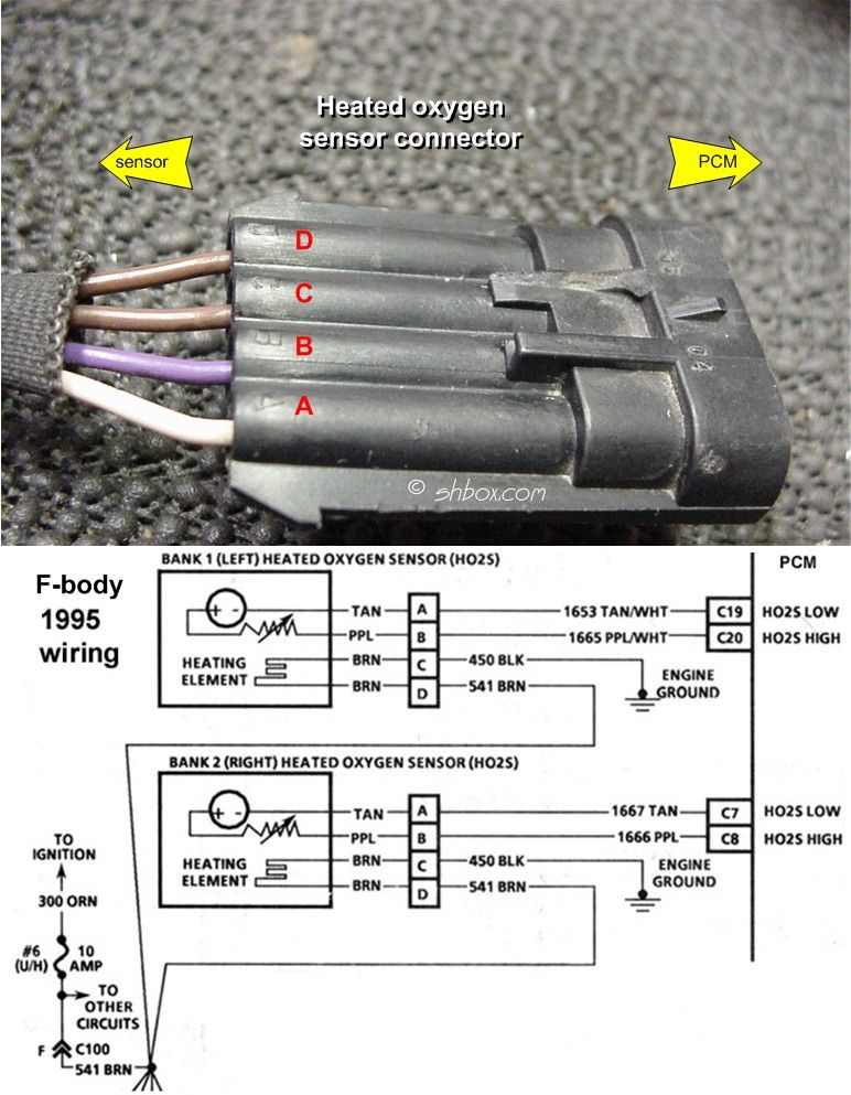 Oxygen Sensor Wiring Diagram Wiring Wiring Diagram And Schematics
