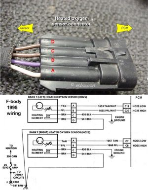 GM O2 Sensor Wiring Diagram | http:shbox1HO2S