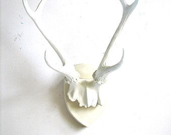 Antlers also google search musings pinterest rh