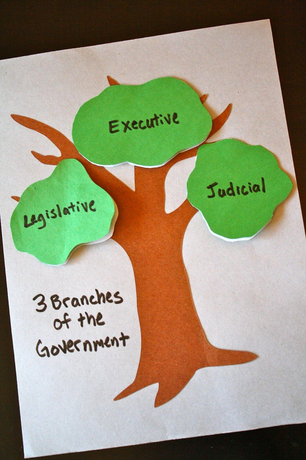 The 3 Branches Of The Government Craft Ccm Gamma Year