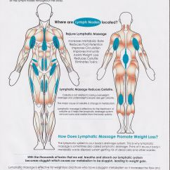 Massage Technique Diagram 1991 22re Wiring How Lymphatic Drainage Works Thai And Massages