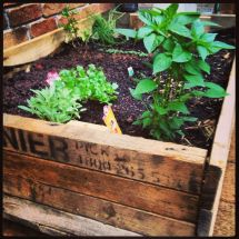 Pallet Veggie Patch Home-spiration Gardens
