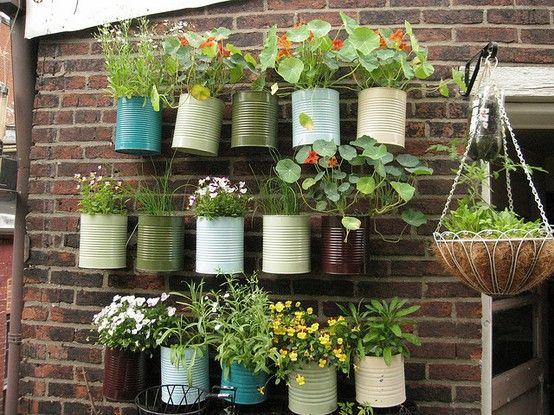 Ideas And Inspiration For A Modern Vegetable Garden Gardens