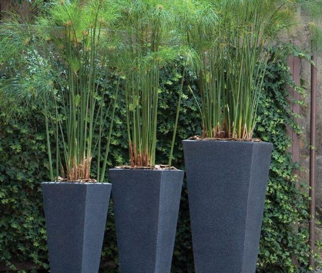 Tall Modern Outdoor Planter