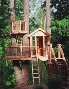The ultimate tree forts rope bridgetreehouse ideastreehouses also crows and nests rh pinterest