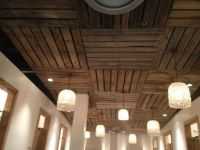 Basement Ceiling Ideas : Inspiring Basement Ideas - Best ...
