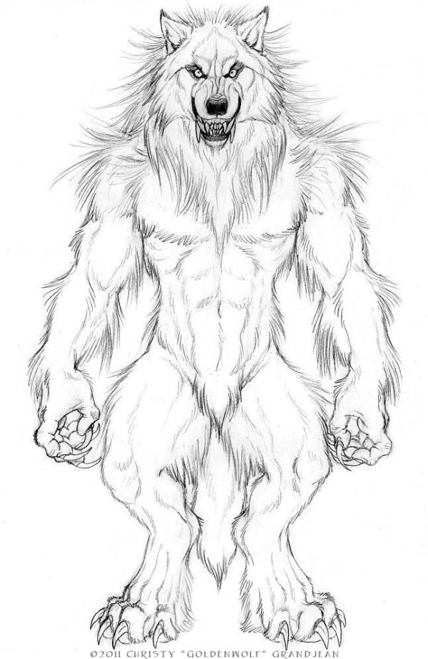 werewolf drawings Google Search Big Bad Wolves