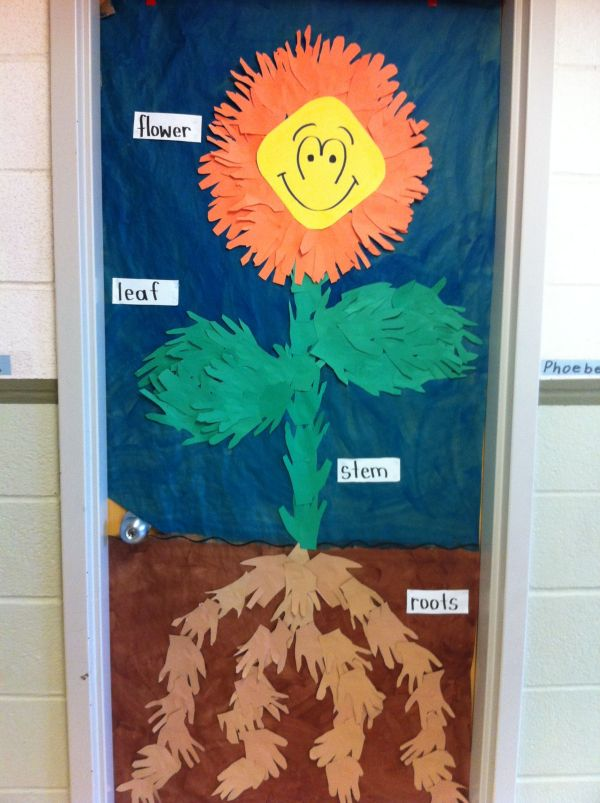 Bulletin Board Learning Parts Of Plant