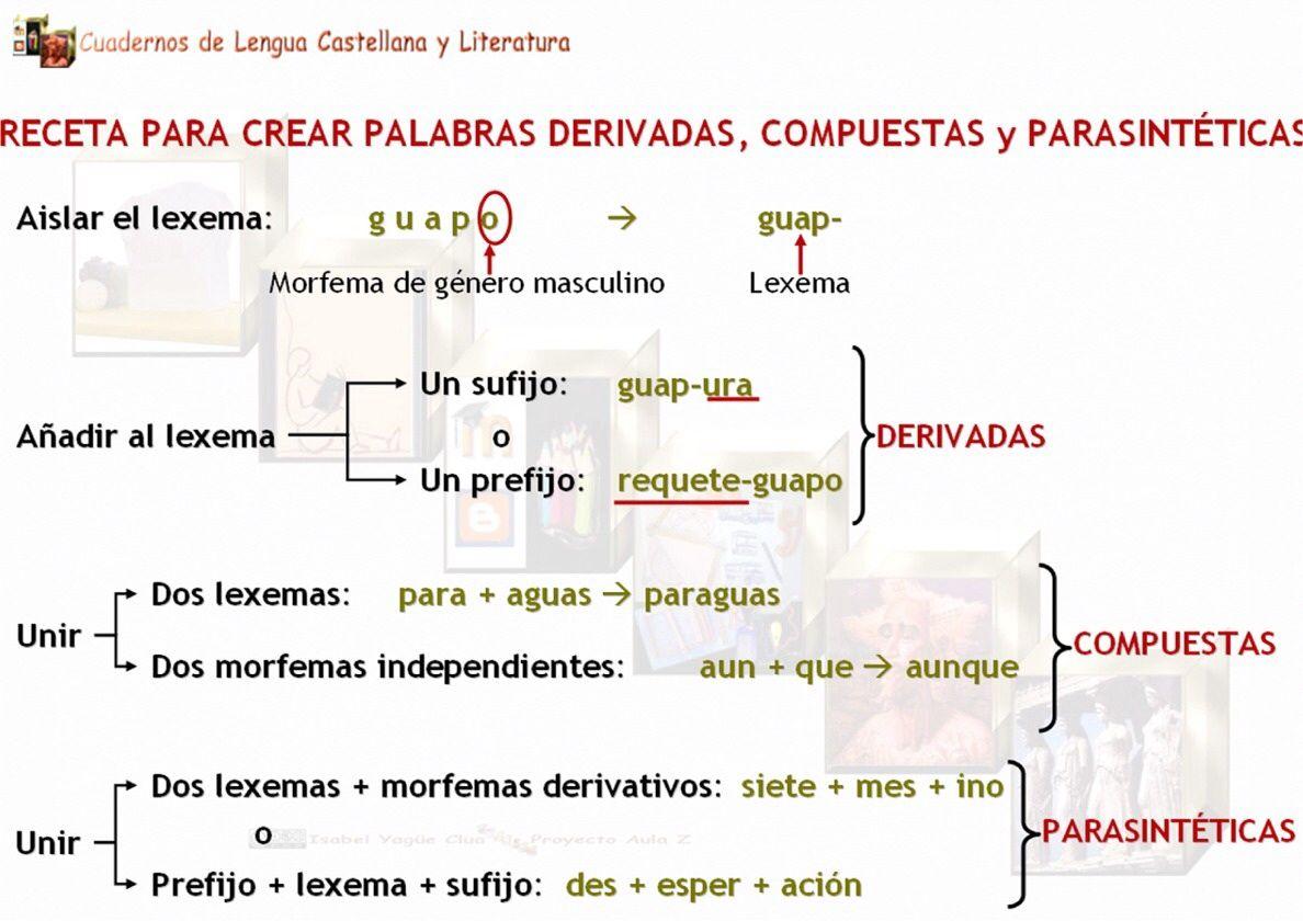 Palabras Compuestas Derivadas Y Parasinteticas