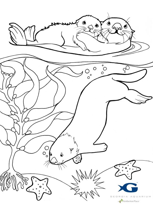 Subjects Pokemon Sea Otter Coloring Page Coloring Pages