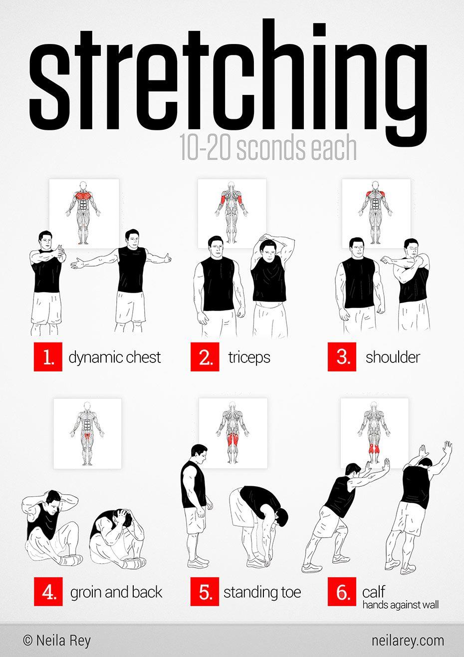 Full body stretching routine. Stretch to gain flexibility
