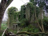 abandoned overgrown buildings | SM9532 : Ruins of ...