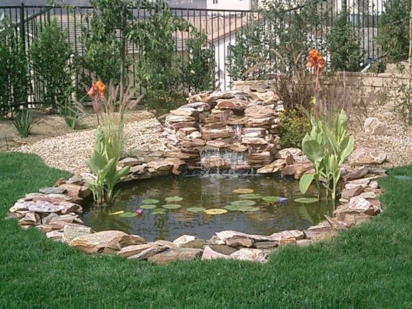 Pond Builders Pond Construction Pond Ideas Backyard Ponds