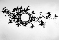 Free US Shipping- 80 3D Butterfly Wall Art Circle Burst ...