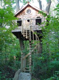 Tree house with spiral staircase | Houses | Pinterest ...