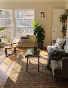 Apartment ideas living room spaces coffee table books morning future house interior design color also pin by emily bae wein on dream pinterest virginia rh