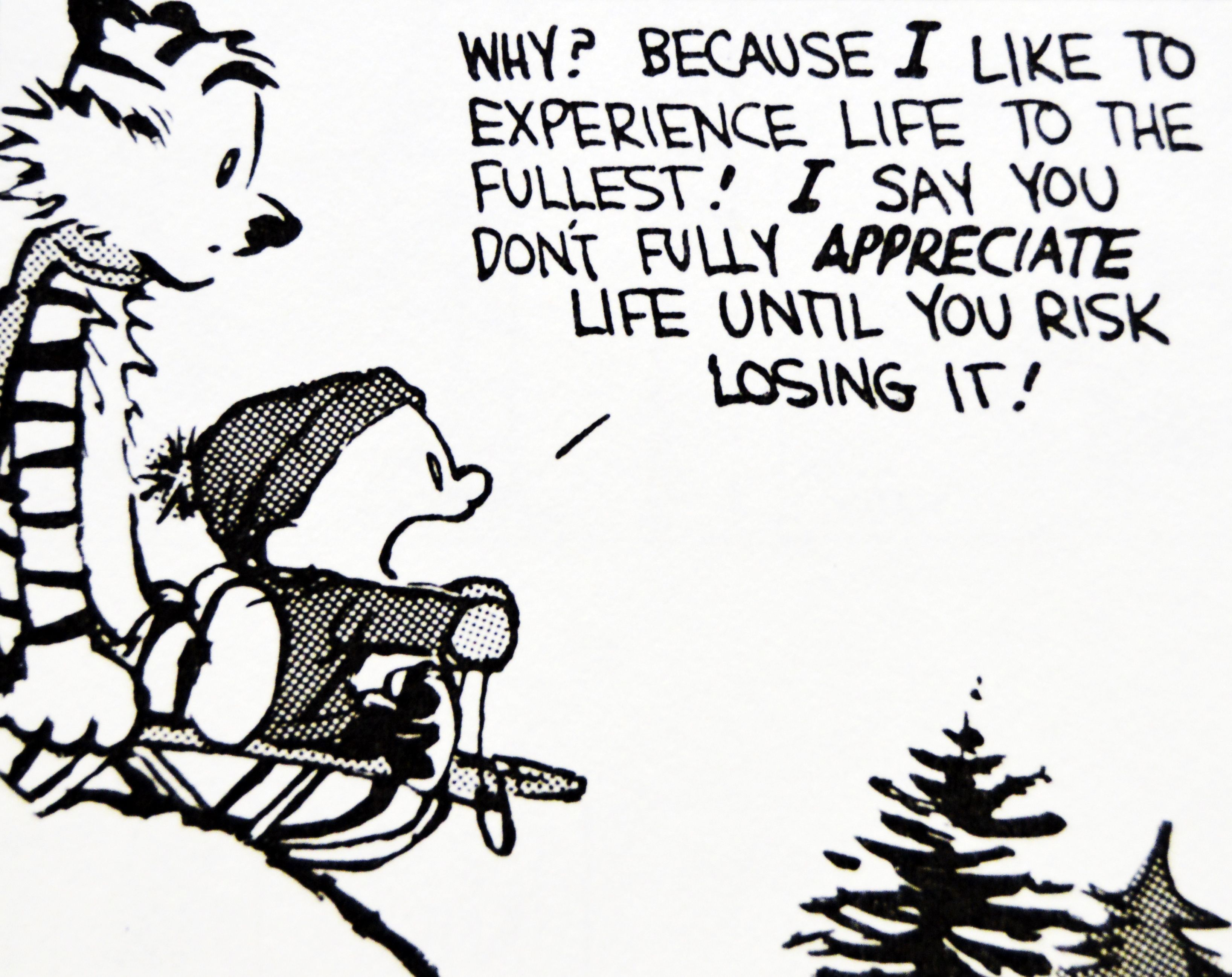Calvin And Hobbes De S Classic Pick Of The Day 8 21 14